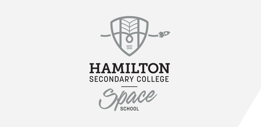 Hamilton Secondary College Space School Logo Panel